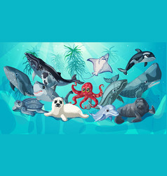 Cartoon sea and ocean life template vector