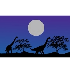 Silhouette of brachiosaurus at the night vector image