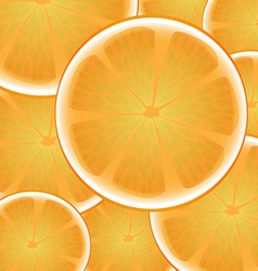 Citrus orange background vector