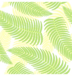 ferns background vector image