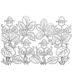 Hand drawn of strawberry bushes branch with buds vector