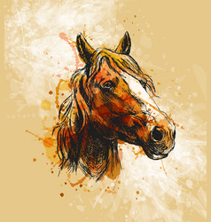 Colored hand sketch horse head vector