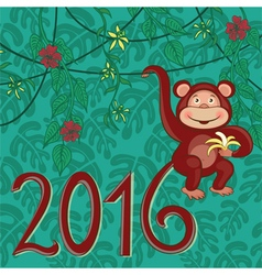Exotic monkey 2016 vector image vector image