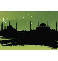Istanbul vector image vector image