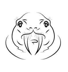 Walrus head vector