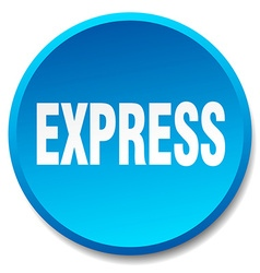 Express blue round flat isolated push button vector