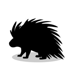 porcupine rodent mammal black silhouette animal vector image