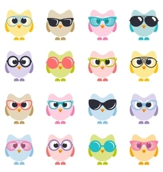 set of colorful owls with sunglasses vector image
