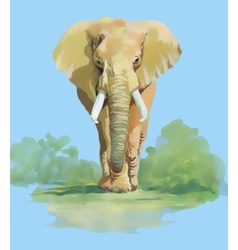 Watercolor elephant on blue background vector