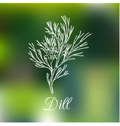 Dill on blurred background vector