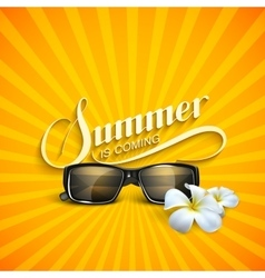 Summer retro label with sunglasses vector