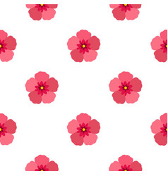 Rose of sharon pattern seamless vector