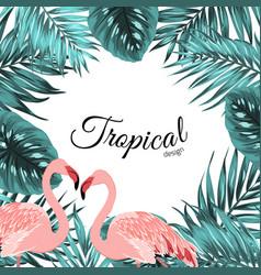 tropical border frame jungle leaves flamingo birds vector image