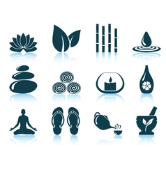 Set of spa icons vector