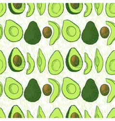 Avocado seamless vector