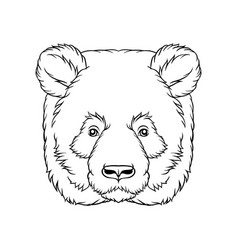 black and white sketch of panda bears head face vector image