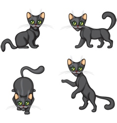 Black Kitten in different poses vector image vector image