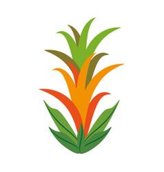 Guzmania flower spring image vector