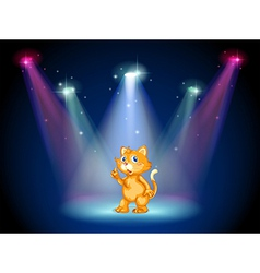 Cat on stage vector