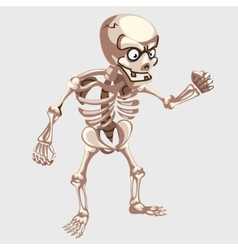 Human skeleton closeup with eyes in cartoon style vector