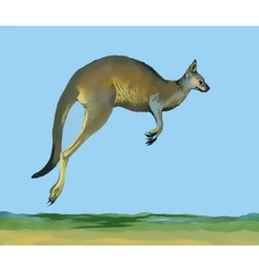 Watercolor kangaroo on blue background vector
