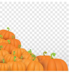Autumn orange pumpkins border design vector