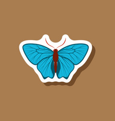 butterfly paper sticker on stylish background vector image