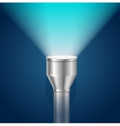 Pocket torch light flashlight vector