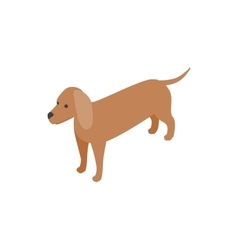 Dachshund dog icon isometric 3d style vector image vector image