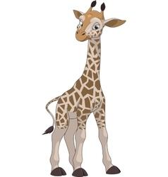 Funny little giraffe vector