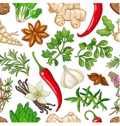 hot pattern with herbs on white vector image
