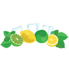 mojito lime lemon mint leaves and ice cubes vector image