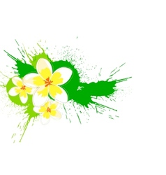 nature flower vector image vector image