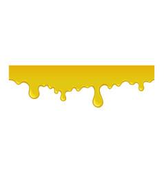 Yellow splash of honey vector