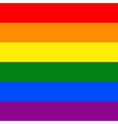 Gay flag vector image