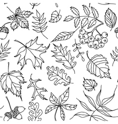 Autumn leaves seamless pattern black and white vector