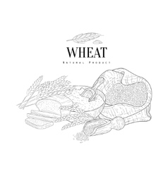 Wheat production still life hand drawn realistic vector