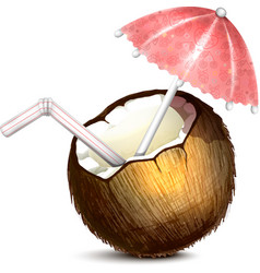 Coconut with umbrella and straw vector