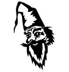 fairy gnome vector image