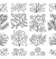 Seamless pattern with plants vector image vector image