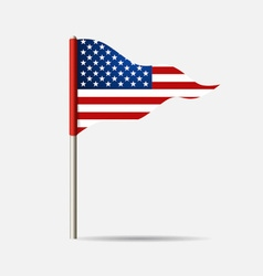 United state of america flag vector