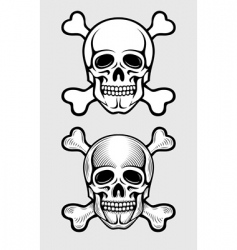 Skull and skeleton bones vector