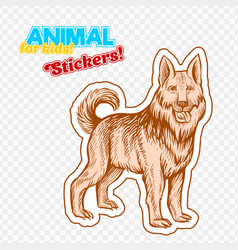 farm animal guard dog in sketch style on colorful vector image vector image