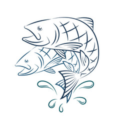 Fish and water splashes vector