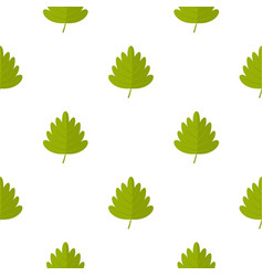 Green hawthorn leaf pattern seamless vector