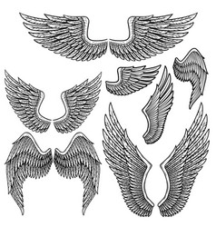 Set of monochrome bird wings of different shape in vector