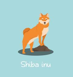 An depicting shiba inu dog cartoon vector