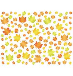 Autumn leaf background vector