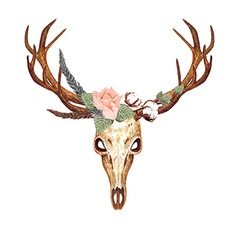 Deer skull rose vector