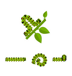 Green caterpillars collection vector